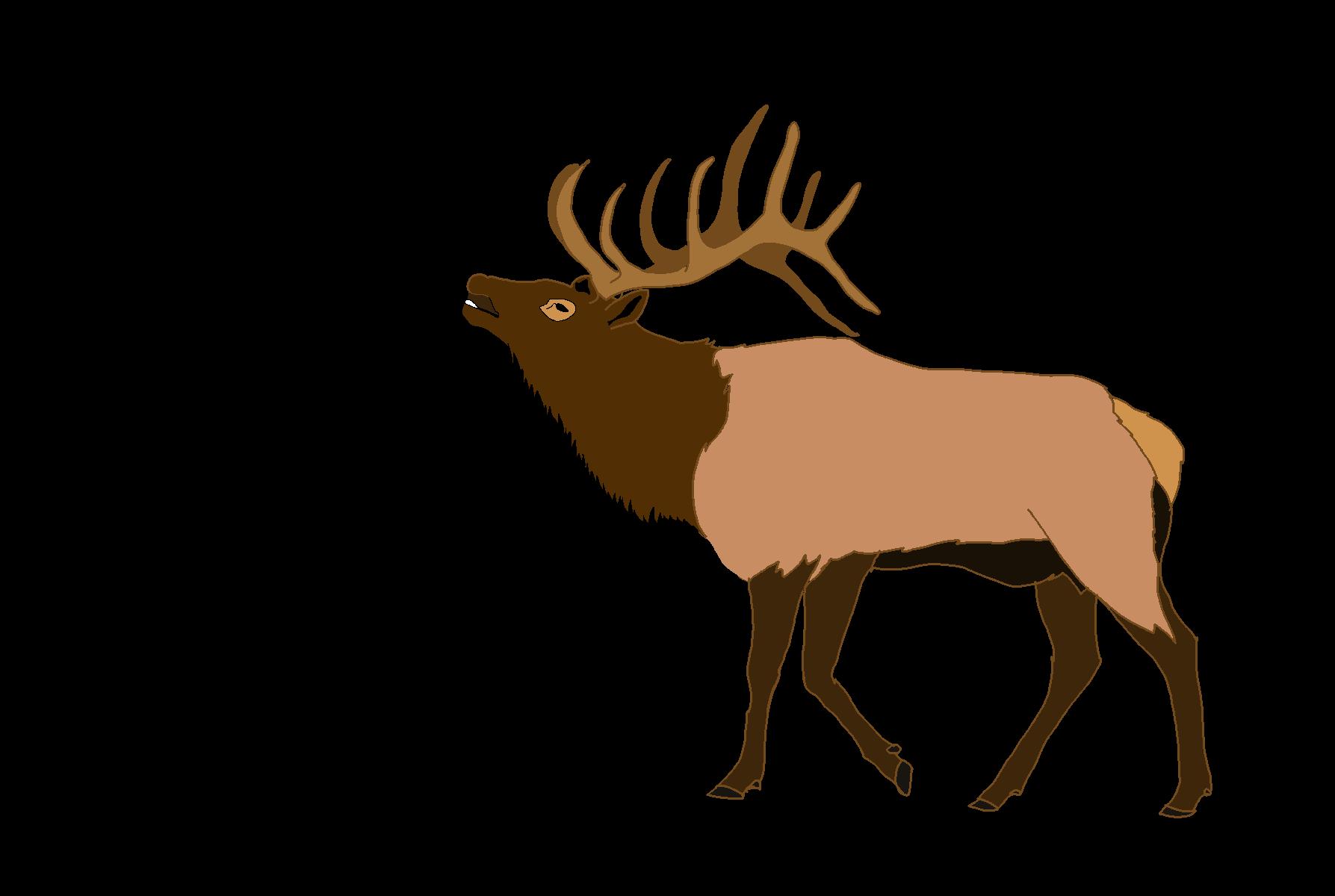 Elk free images at clker com vector clip art