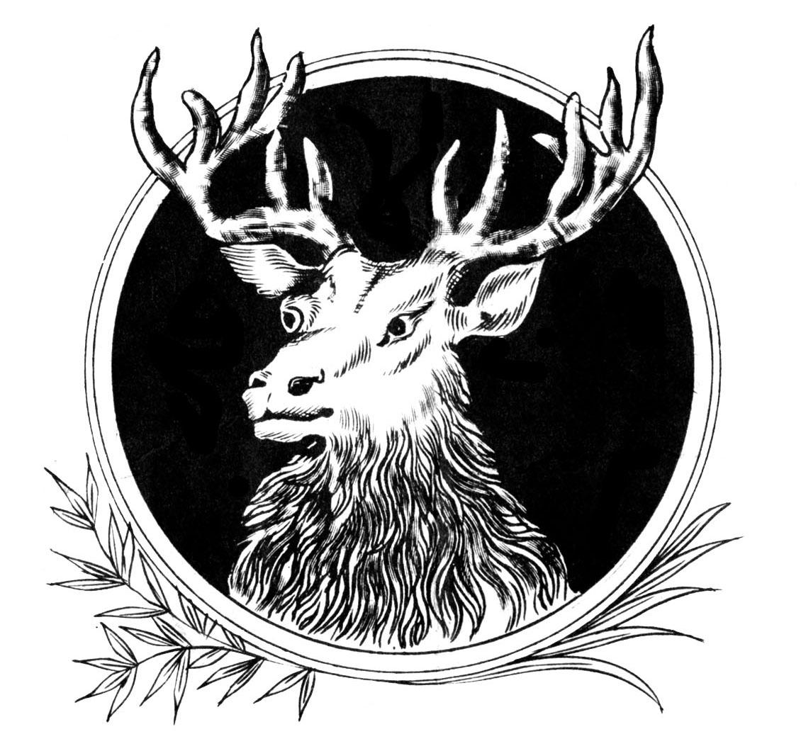 Elk torah scroll clip art cmshark