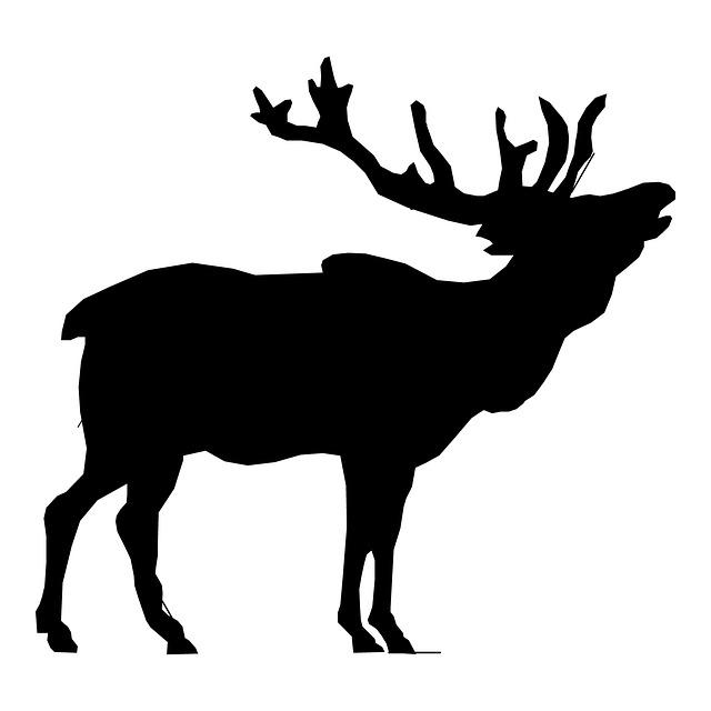 Free illustration elk stag head deer clip art free image