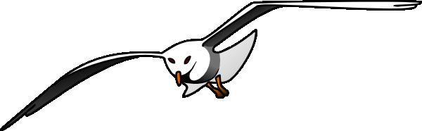 Seagull clip art at clker vector clip art