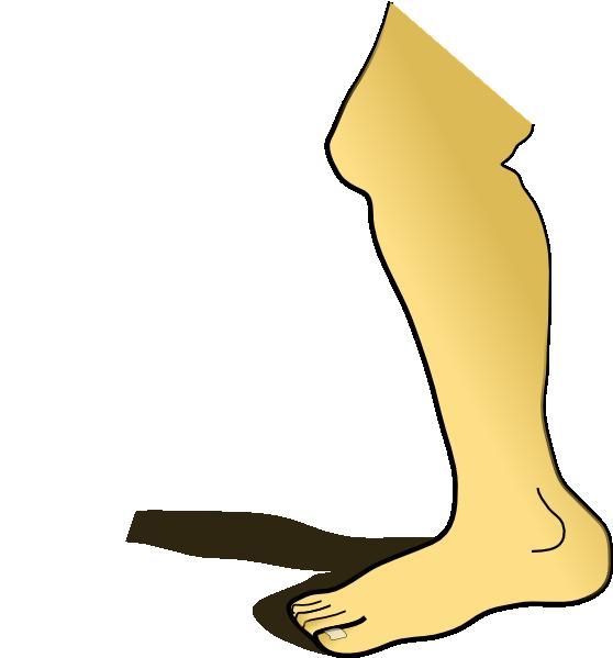 Leg clip art at clker vector clip art free