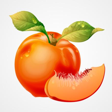 Peach clip art vector peach graphics clipart me