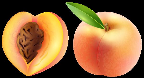 Peach transparent clip art image
