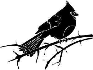 Bird silhouette clipart image clip art cardinal