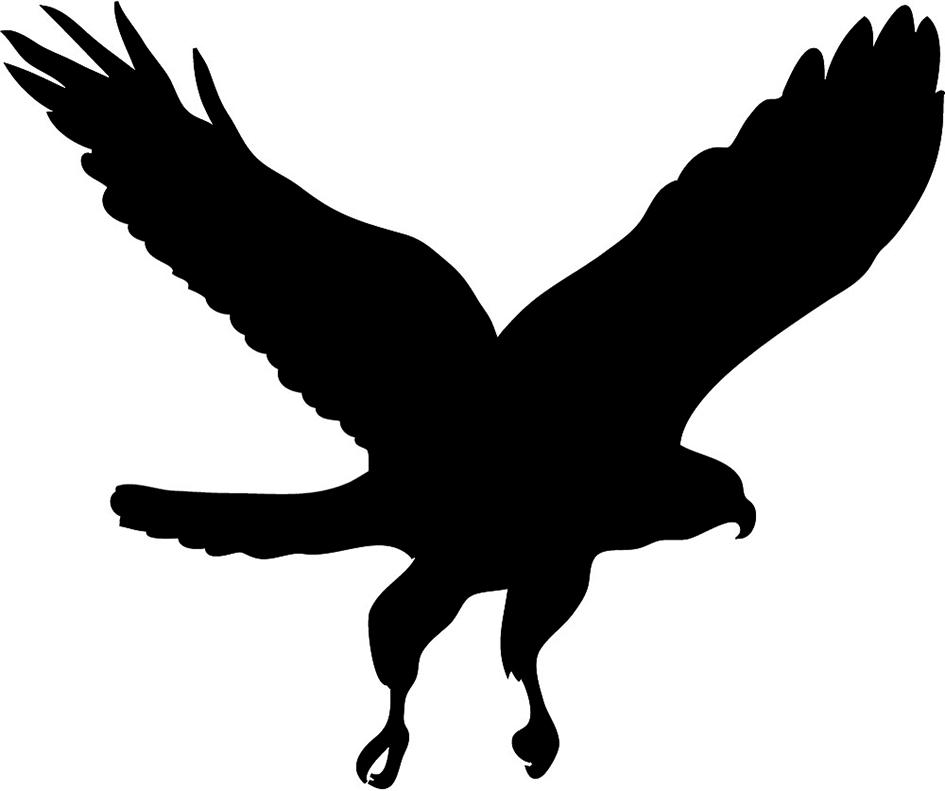 Bird silhouette hawk silhouette clip art danaspaj top