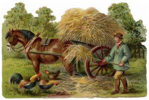 Farming victorian clip art vintage farm clipart farmer stooking hay