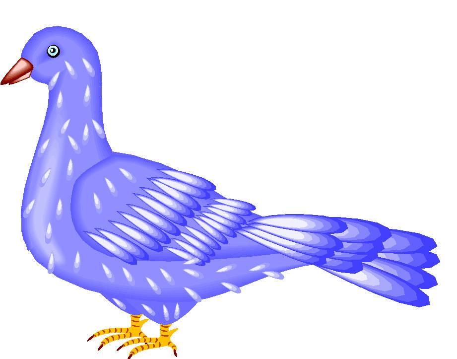 Clip art clip art pigeons