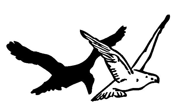 Pigeon clip art at clker vector clip art 2