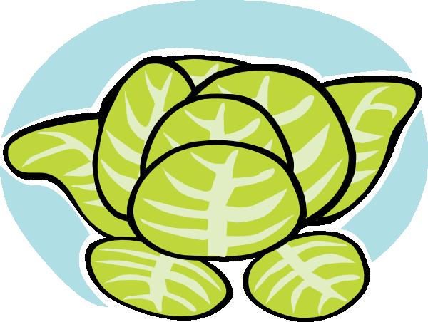 Iceberg lettuce clip art at clker vector clip art