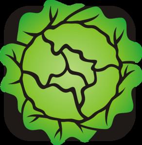Lettuce clip art at clker vector clip art
