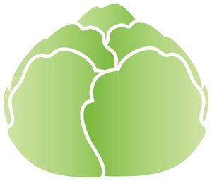 Lettuce clipart clipart 4