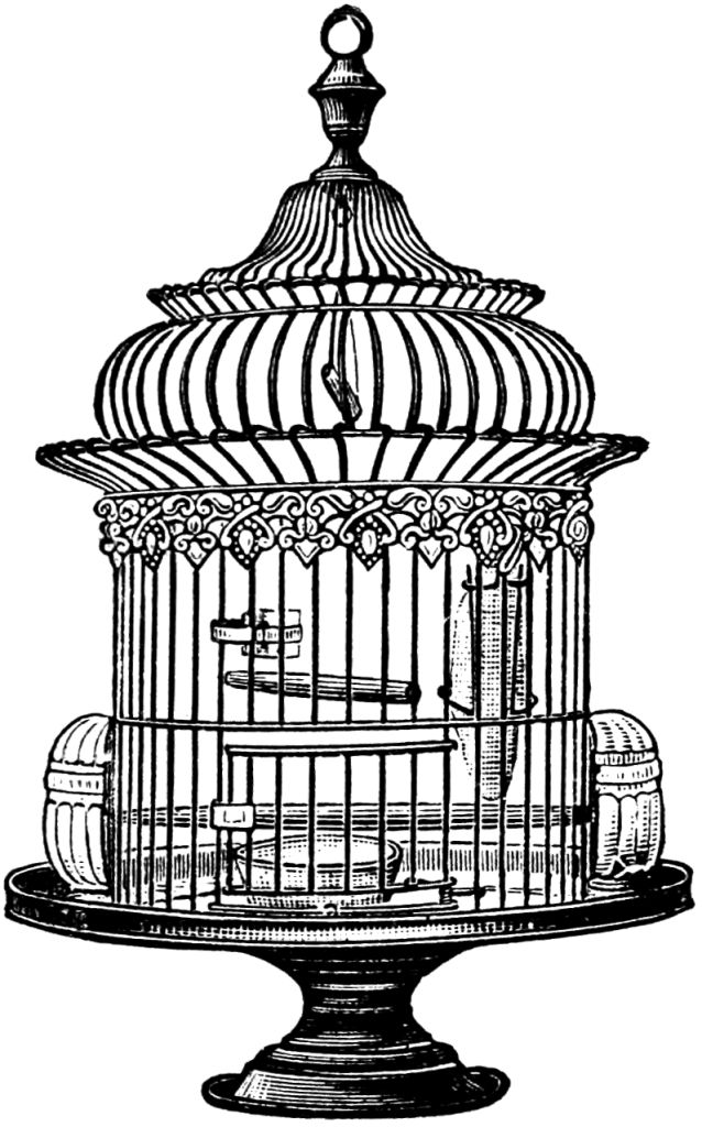 Free vintage bird cage clip art graphics