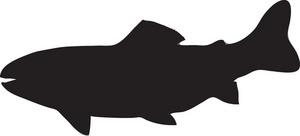 Free trout clip art clipart