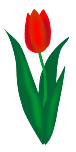 Tulip clip art border free clipart images 4