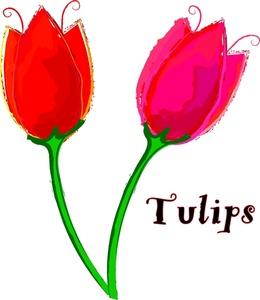 Tulip clip art clipart 3