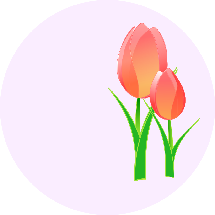 Vector tulip clipart