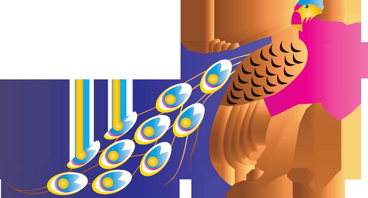 Peacock clip art clipart clipartix 5