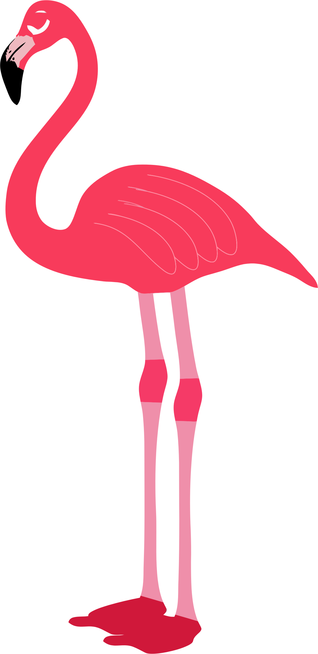 Clipart flamingo clipartix
