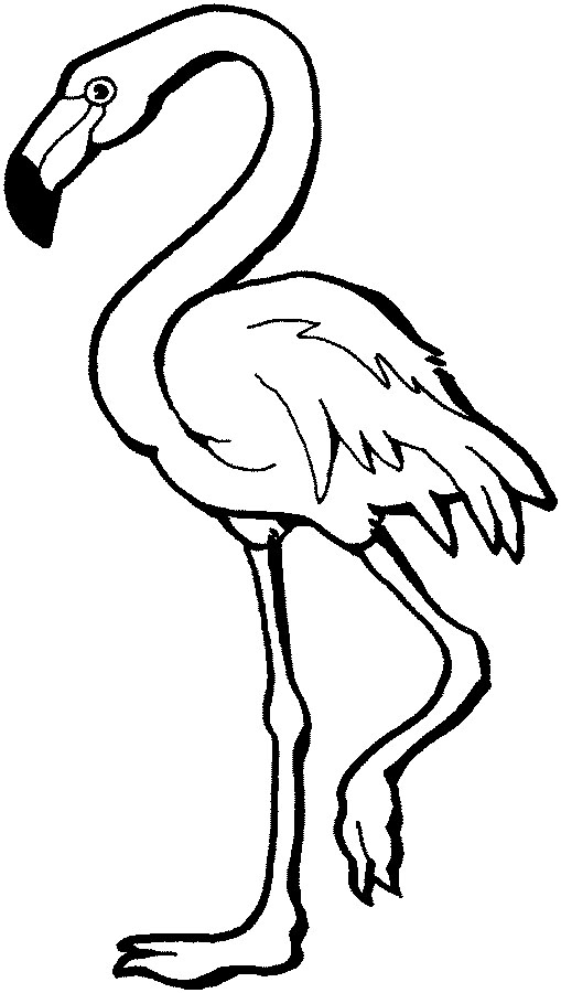 Flamingo clip art free clipart images clipartix 2