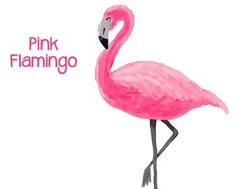 Flamingo clipart 4