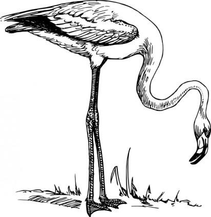 Flamingo clipart 6 2