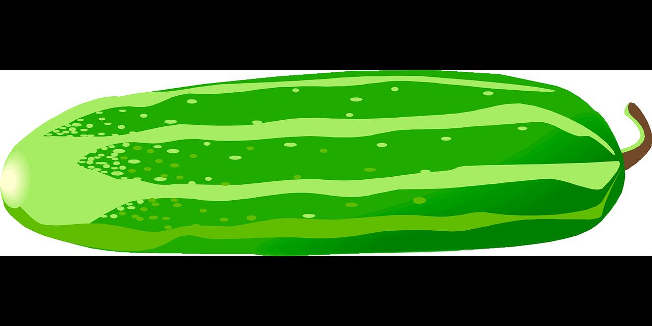 Free cucumber clip art