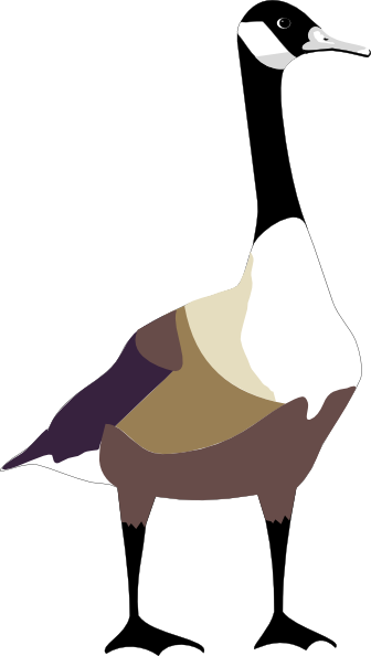 Goose geese clipart hostted