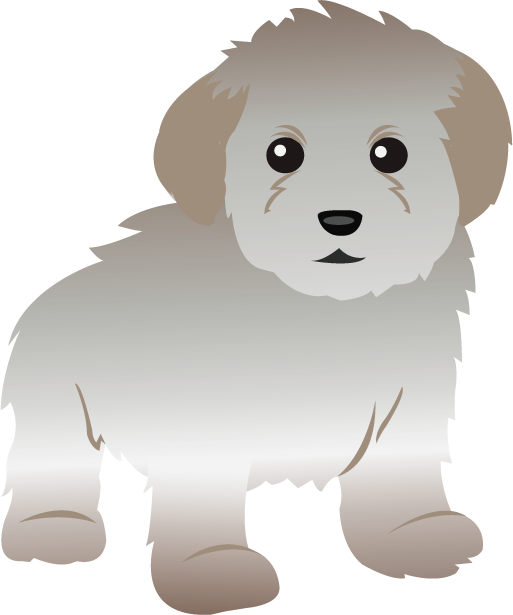 Toy poodle clipart clipart kid